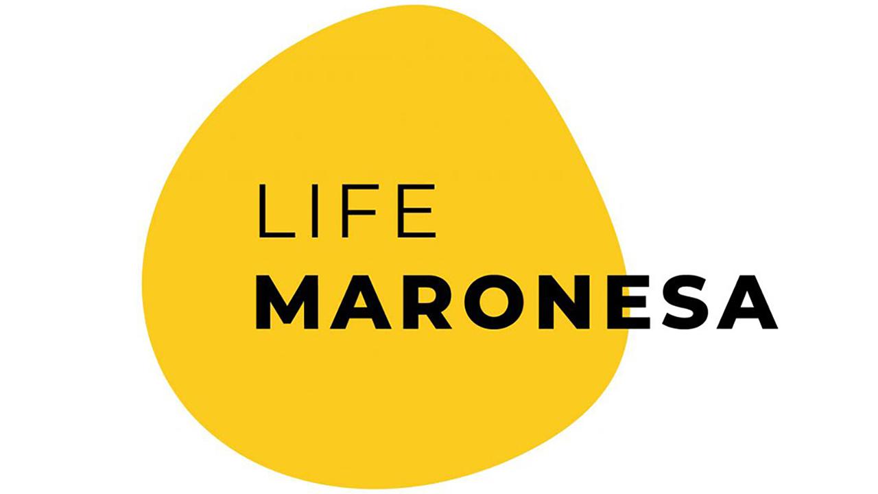 Life Maronesa